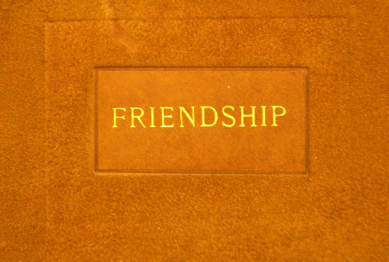 friendship essay | amanin